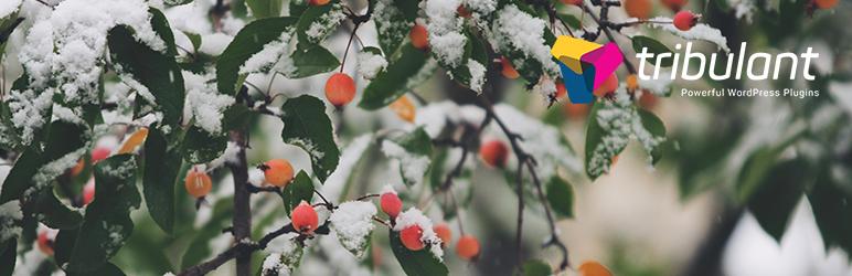 افزونه Snow Storm - بارش برف در وردپرس